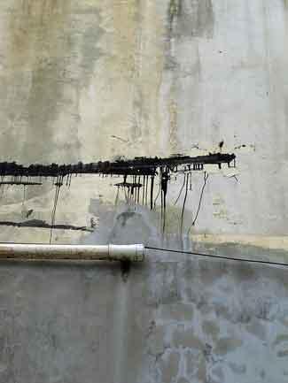 Mayaguez (2) Puerto Rico 2011
